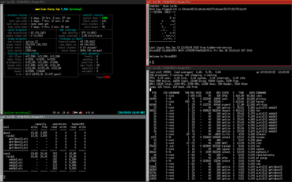 [Screenshot: ElectroBSD afl-fuzzing Privoxy]